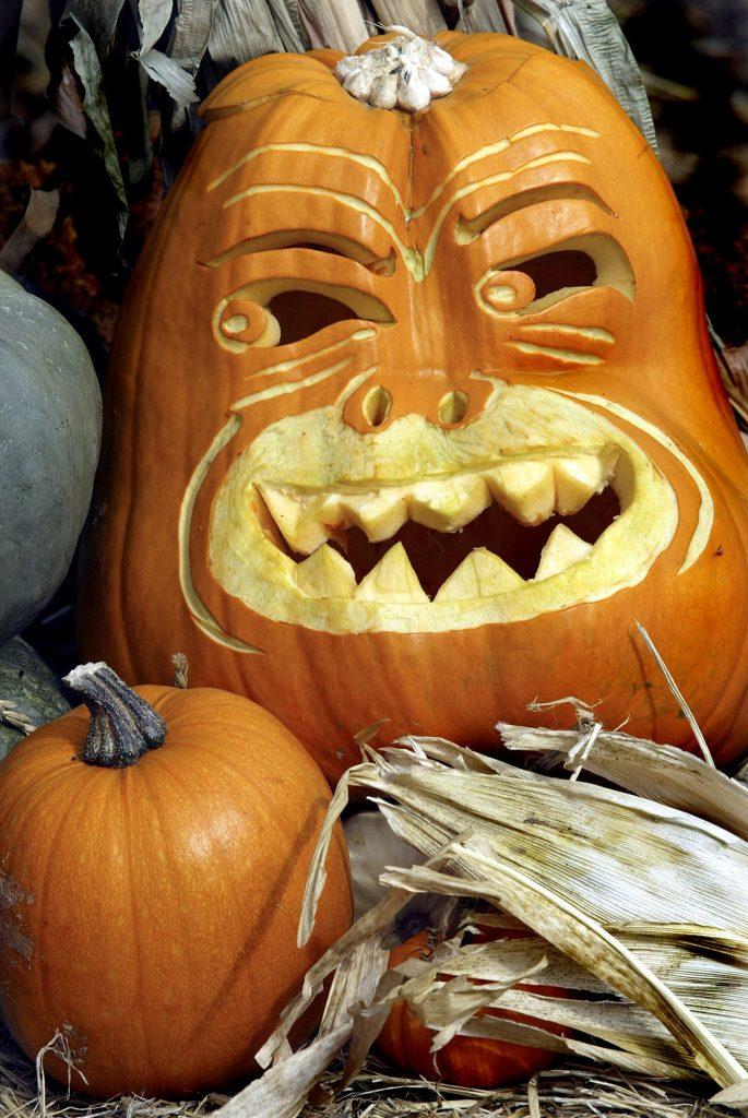 A giant pumpkin is a laugh in a small pumpkin