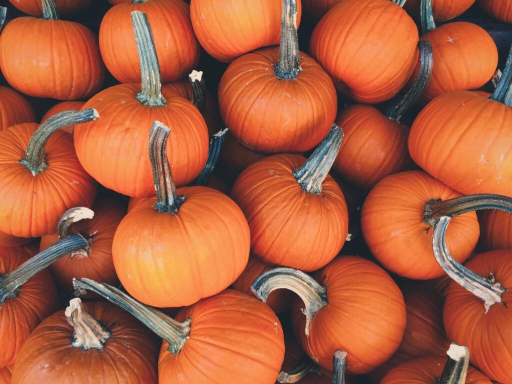 Halloween pumpkin picture 2021