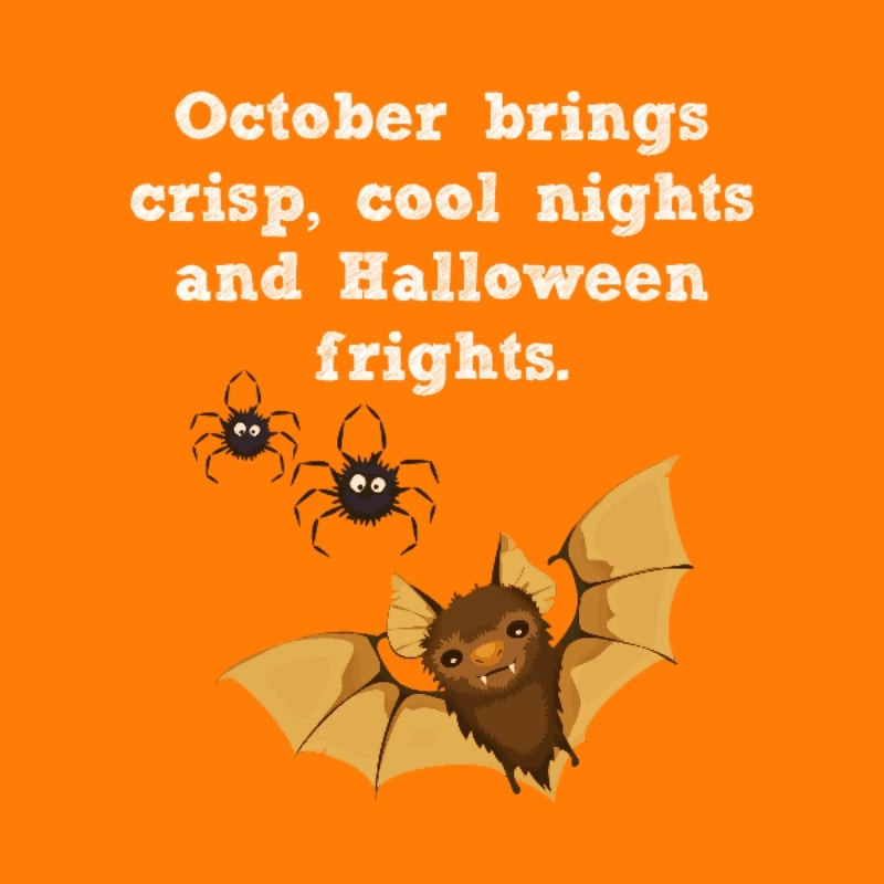 Bats and spider are say - October brings crisp, cool night and Halloween frights.