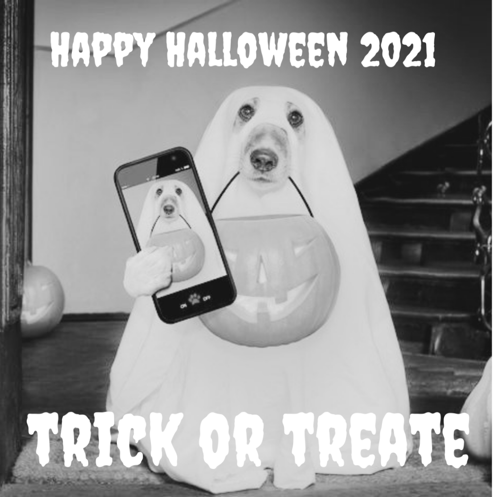 A dog is taking a selfie and wishing happy Halloween 2021