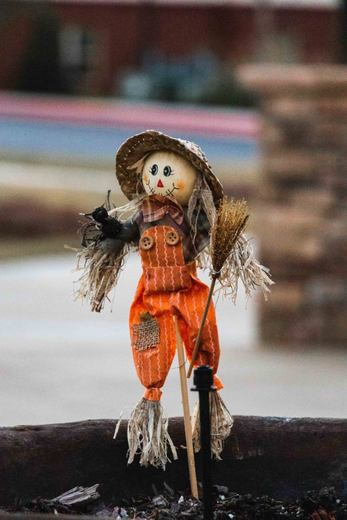 Tinny scarecrow is waiting for you