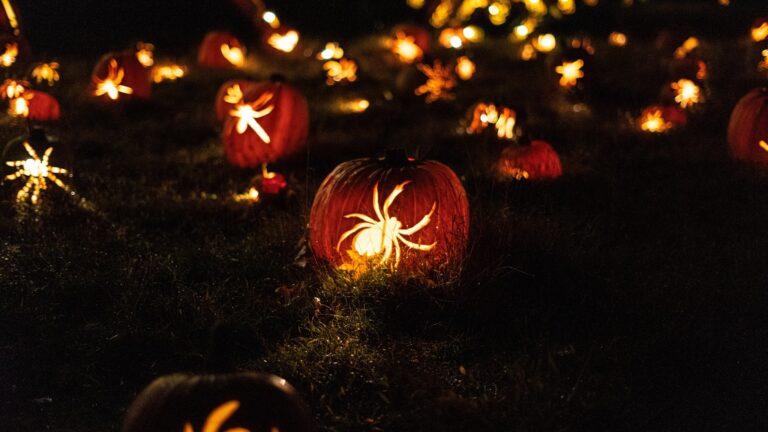 Happy Halloween wallpaper including spider designpumpkinlight