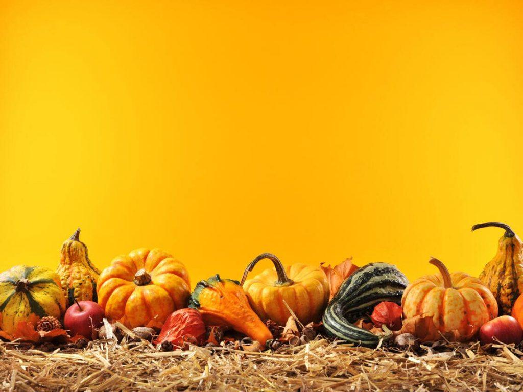 happy thanksgiving wallpaper for desktop