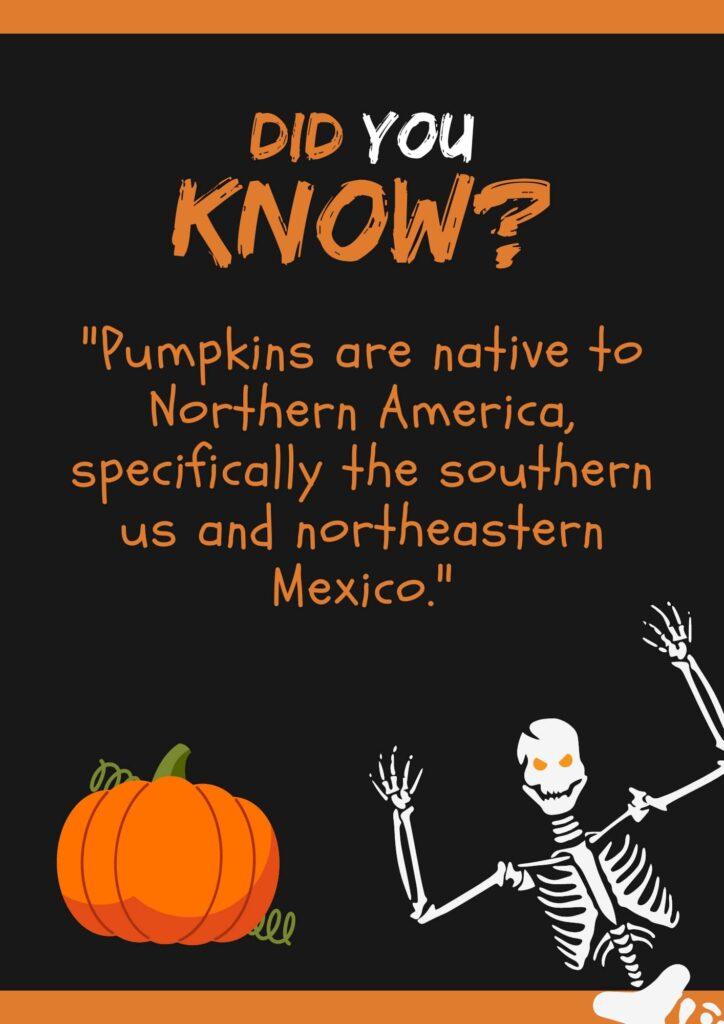 information about pumpkins for kids