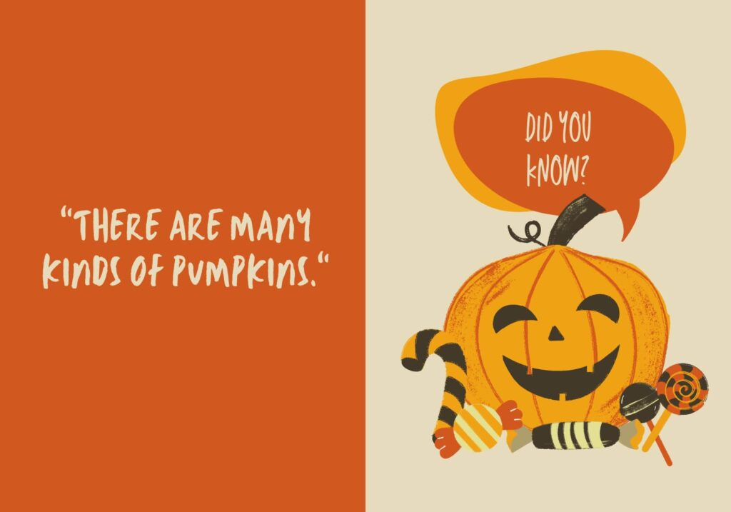 what is the top of a pumpkin called