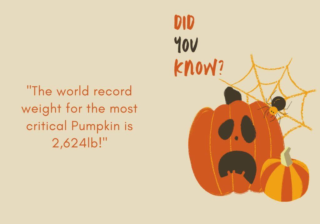 why are pumpkins orange