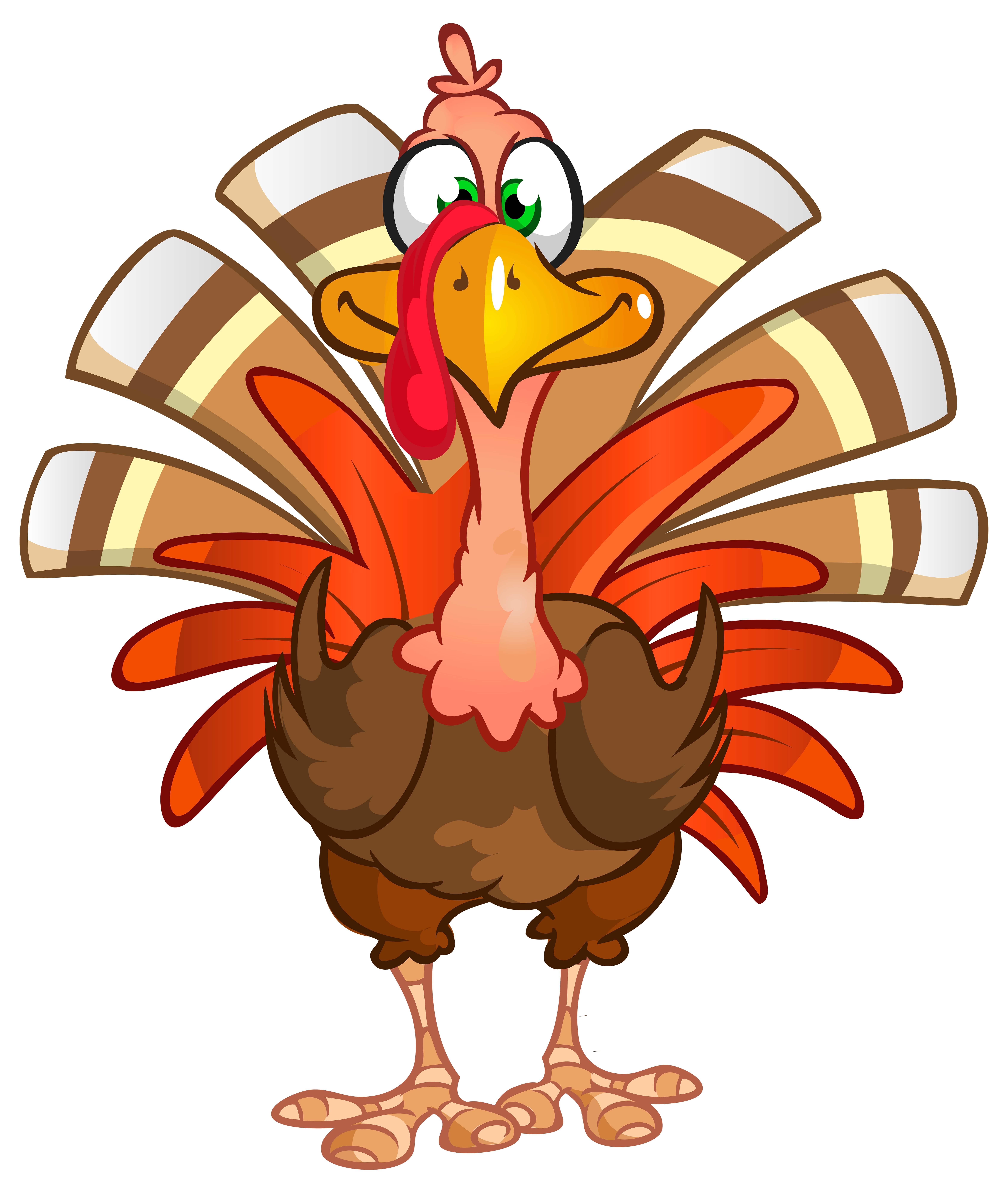 Thanksgiving Turkey Photos